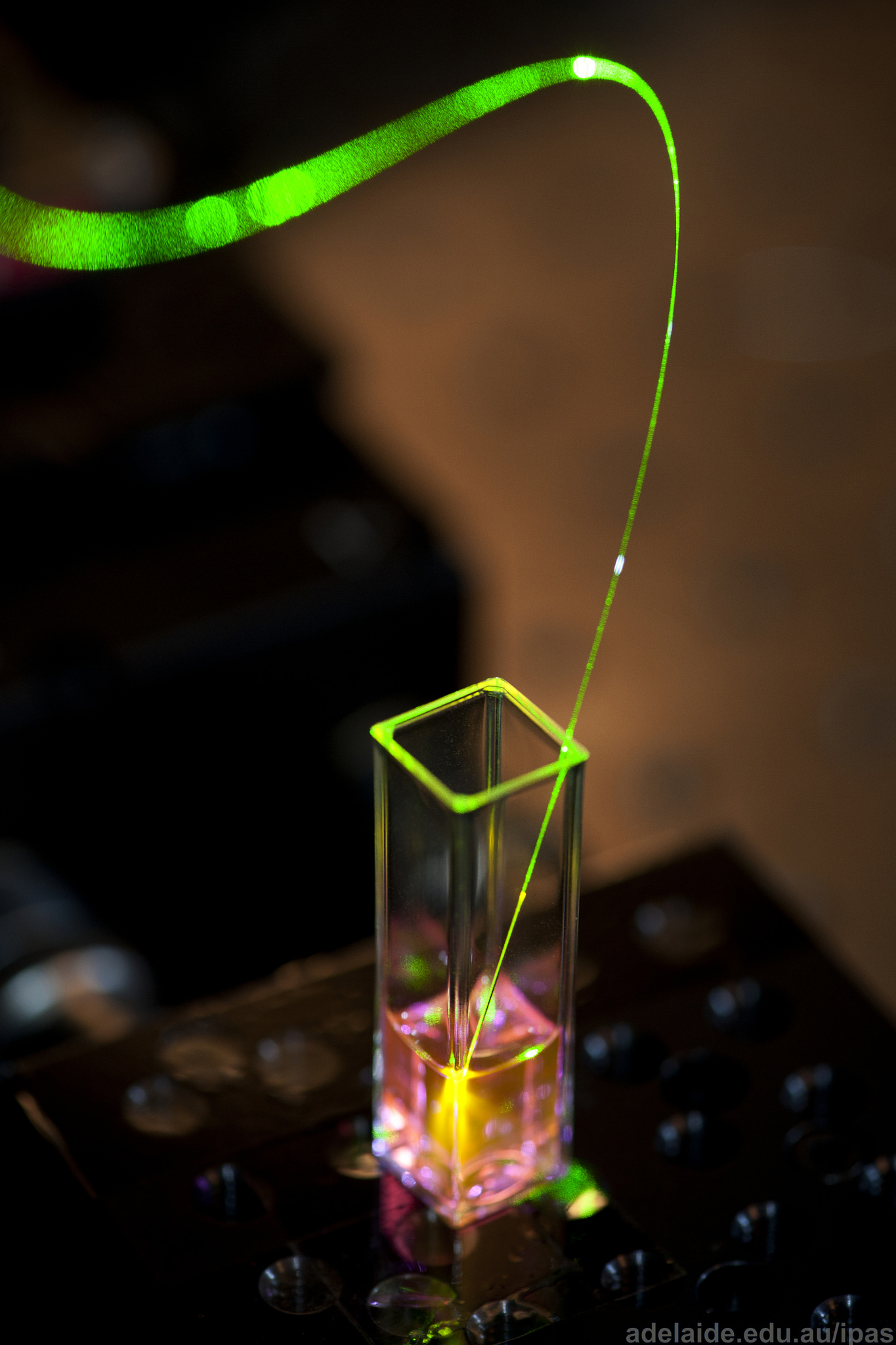 Photo by IPAS institute for photonics & advanced sensing, Creative Commons Attribution, from Flickr: https://flic.kr/p/okt6j5