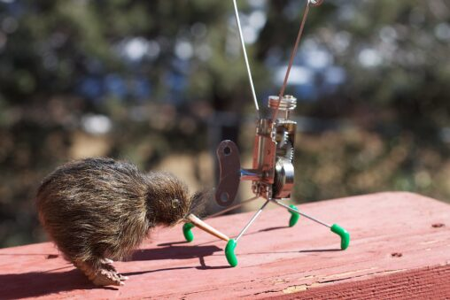 A toy kiwi bird gentle touches the foot of a toy metal robot, as if they were playing tag